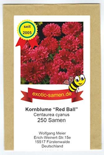 "Centaurea cyanus - Bienenweide - Rote Kornblume\""Red Ball\"" - 250 Samen"