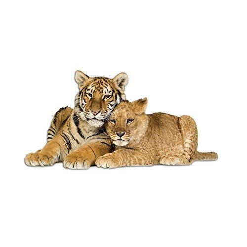 GRAZDesign Tapetensticker Tiger und Löwe, Wanddeko Wandaufkleber liegend Kinderzimmer, Wandsticker Deko Aufkleber Tigerkopf Wilde Tiere / 78x40cm