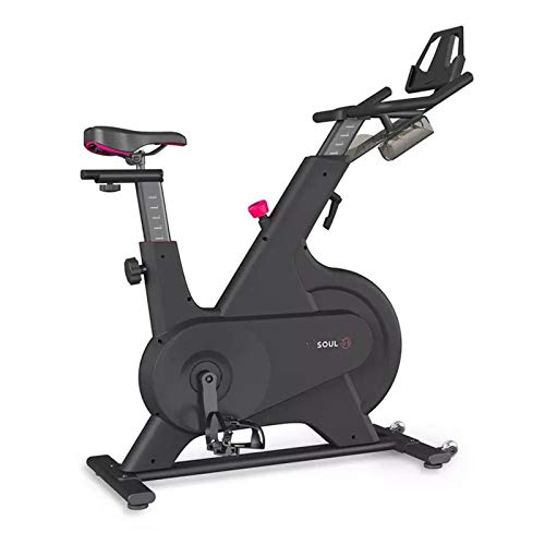 YourBooy Bicicleta Giratoria con Control Magnético para El Hogar, Bicicleta De Ejercicio para Interiores Ultra Silenciosa, Bicicleta Estacionaria con Volante Todo Incluido Y Resistencia,Negro