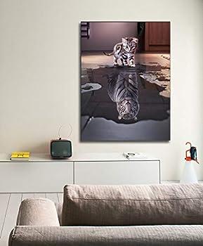 Best kitten tiger reflection Reviews
