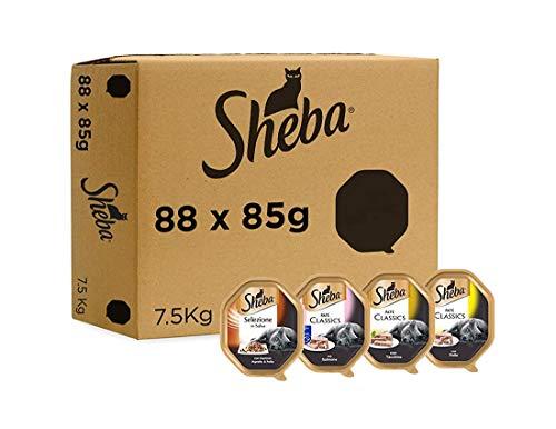 Sheba Confezione da 88 Vaschette da 85gr, 22 Vaschette per ogni Gusto di: Sheba Patè Classic Pollo, Sheba Patè Classic Tacchino, Sheba Selezione in salsa Agnello e Pollo, Sheba Patè Classic Salmone