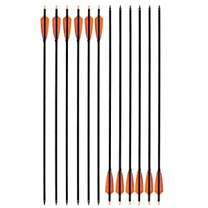 CQ Archery Practice Arrows for Recurve/Compound Bow or Traditional Bow (Targeting and Hunting) 30 inch Shaft with Removable Tips(Pack of 6/12)