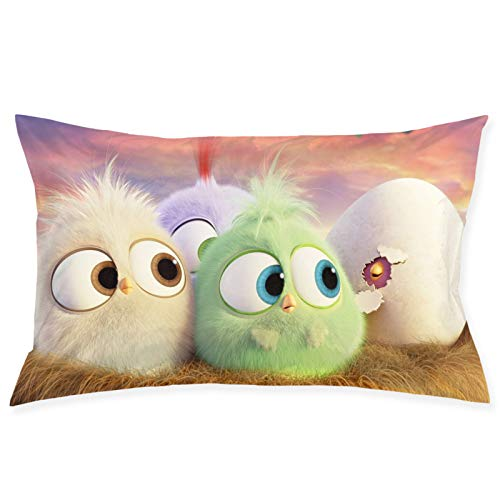 Soft Throw Pillow Covers, Angry B-ird Pillowcase Suitable for Student Dormitory Children's Room Bedroom Living Room Office Bed Decoration 30x20 inch