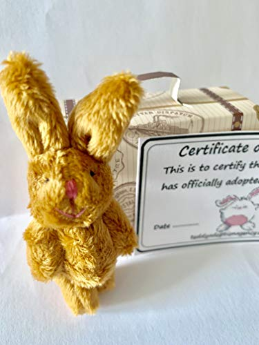 Small Plush Cuddly Brown Rabbit with Adoption Certificate in Cardboard Suitcase
