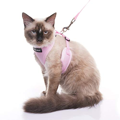 EXPAWLORER Escape Proof Cat Harness with Leash - Best Cat Safety Harness Mesh Adjustable Vest Harness for Cats and Small Dogs Outdoor Walking