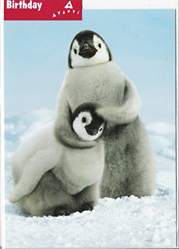 Penguin Noogie Funny Birthday Card