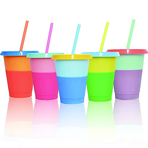 16 oz Color Changing Cups Tumblers with Lids Straws, 6 Pack Reusable Plastic Cold Cups for Adults Kids, BPA Free, Summer Coffee Tumblers Party Cup (Set of 6)