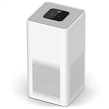 TOPPIN Air Purifier with 21dB Ultra-Silent H13 True HEPA Filter