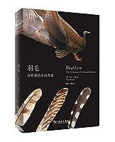 羽毛:自然演化中的奇迹