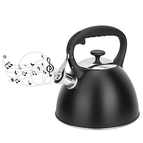 ClearloveWL Tetera, 3.0L Inducción del Agua Inferior Hervidoras Silbido De La Tetera De La Caldera con Un Silbato De Utensilios De Cocina For La Cocina Dispositivos del Hogar (Color : 2 3L)