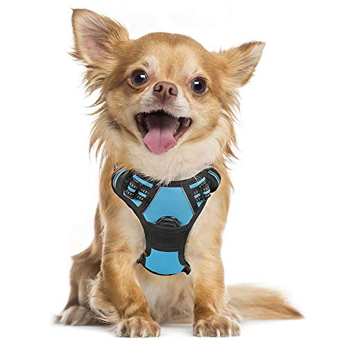 rabbitgoo Dog Harness, No-Pull Pet Harness with 2 Leash Clips, Adjustable Soft Padded Dog Vest, Reflective No-Choke Pet Oxford Vest with Easy Control Handle for Small Dogs, Baby Blue, S