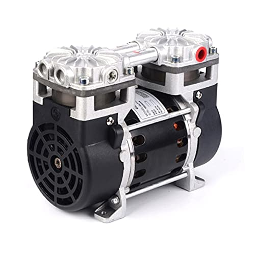 ZTBH Stainless Steel Booster Pump Lawn Jet Pumps Hzw-165 Dc Airbrush Double Head Piston Vacuum Pump, High Pressure Pump for Home Garden Water Transport Irrigation (Voltage : 220V)
