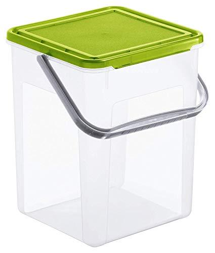 Rotho Basic Aufbewahrungsbox 9l mit Deckel und Henkel, Kunststoff (PP) BPA-frei, transparent/grün, 5kg/9l (23,0 x 22,5 x 27,0 cm)