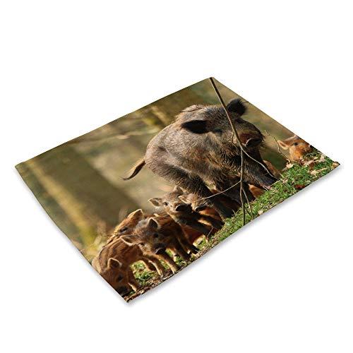 NTZTO Tischsets,Baumwolle Und Leinen Stoff Kunst Westlichen Tischset Tier Serie Katzen Und Hunde Wildschwein Elch Panda rutschfeste Isolierung Tischmatte-A-06