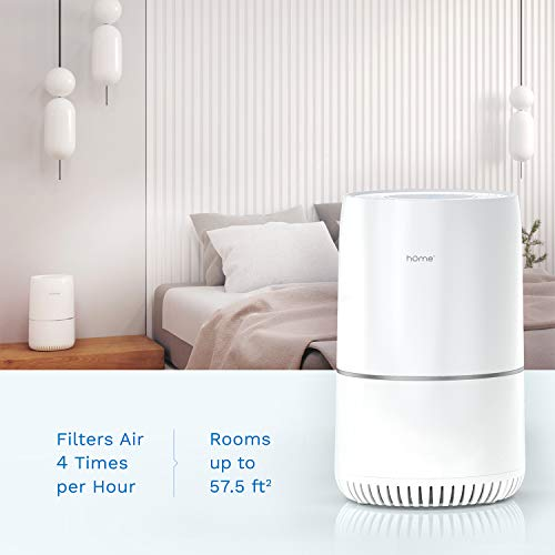hOmeLabs True HEPA H13 Filter Air Purifier for Home, Bedroom or Office - 3-Stage Filtration and Activated Carbon to Remove Small Particles and Reduce Smoke and Odors