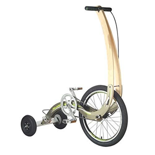 TWW Fahrräder, Sportwagen, Sport, Fitness, Transport, Kein Sitz, Fahren, Zusammenklappen, Ultraleichtes, Dynamisches 20-Zoll-Fahrrad,Messing