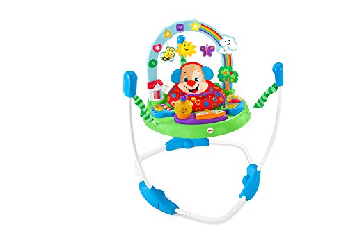 Fisher-Price Laugh and Learn Puppy's Activity Jumperoo