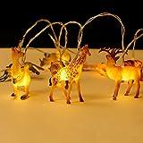 HOOLGHTLED String Lights, 5.6ft 8-LED Wild Animal String Lights, Battery Operated String Lights for Indoor/Outdoor Children Bedroom Nursery Decoration