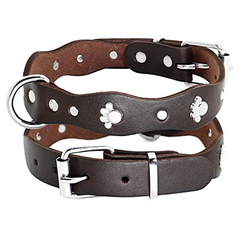 PET ARTIST Luxury Genuine Leather Dog Collar-Handmade for Small/Medium Dog Breeds with The Finest Real Leather-Full Grain Latigo Leather and Stylish Strong Dog Collar