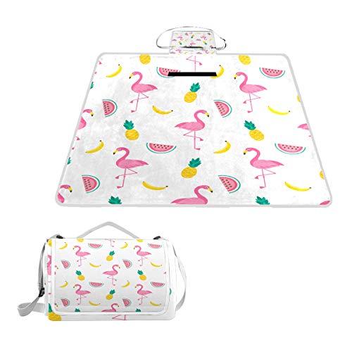 XINGAKA Couverture de Pique-Nique,Seamless Pattern Flamingo Birds Fruits Raster,Tapis Idéale pour Plage Jardin Parc Camping