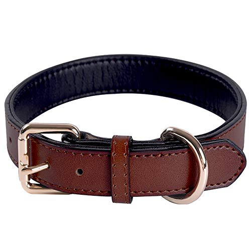 Collar de Perro Ajustable de Cuero Genuino con Collares Acolchados Suaves y Gruesos, Ideal para Perros de Raza pequeña, Mediana, Grande (marrón) (M)