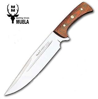 Amazon.es: cuchillo jabali