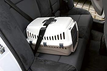 Kerbl Box de Transport Expédition pour Chiens 48 X 32 X 32 cm Vert/Gris Foncé