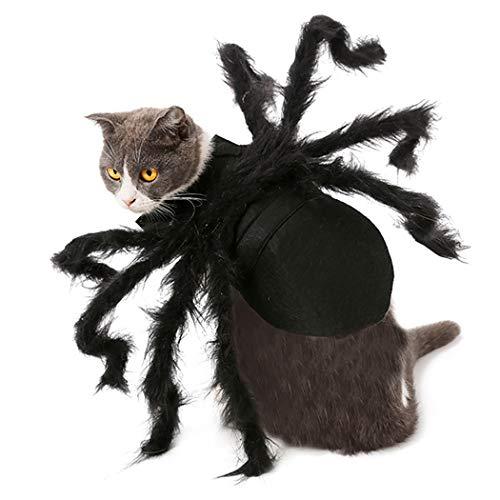 Legendog Halloween Haustier Kostüm Kreatives Neuheit Pelzspinnen Katzen Kostüm Hundekostüm