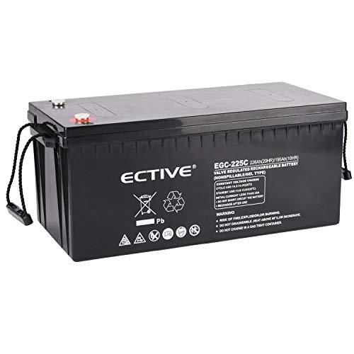 ECTIVE 12V 225Ah Gel Deep Cylce Batterie | Extrem Zyklenfeste Solar Versorgungsbatterie (VRLA) in 6 Varianten
