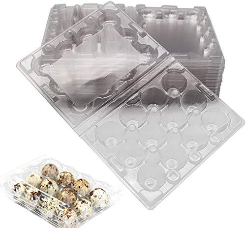 N / A Quail Egg Cartons Each Holds 12 Quail Eggs Bulk Carton for Small Eggs Quail Pheasant Pigeon Grouse (20)