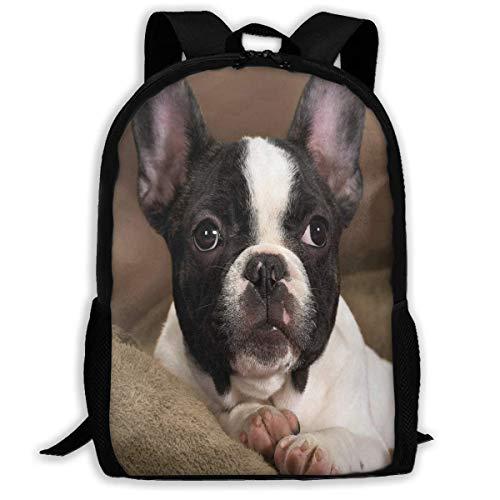 TTmom Zaini/Zaino Casual,Borse a Zainetto, Backpack for Adults Cute Pet Boston Terrier Dog Shoulders Bag