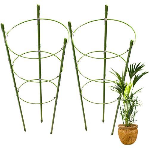 LEOBRO 2 Pack Plant Support Cage Rust Resistant Garden Plant Support Ring Plant Stake Plant Support for Tomato, Trellis, Climbing Plant, Flower, 17.7' High, 5.48'/6.18'/6.89' Inner Diameter