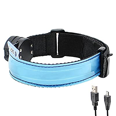 LED Armband - USB Rechargeable -Glovion LED Running Armband Light- High Visibility Safety Gear for Night Running, Jogging & Cycling