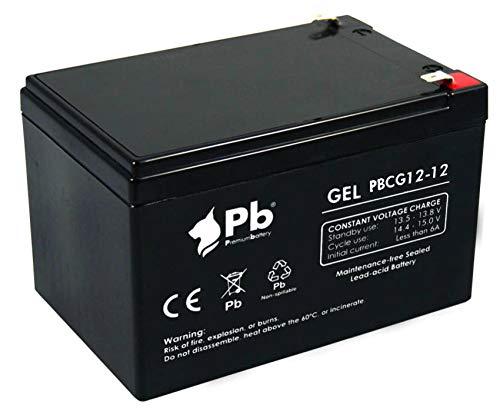 Batería GEL ciclo profundo 12V 12Ah PBCG12-12
