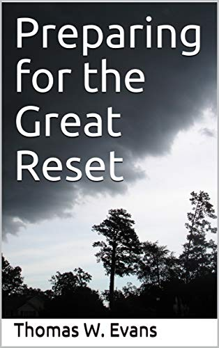 Preparing for the Great Reset (English Edition)