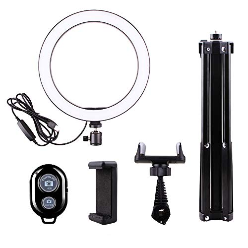 DelongKe LED Ringlicht 10,2 Zoll Light Dimmable Lighting Kit Mit 160CM Light Stand, Handyhalter Für Videoaufnahmen, YouTube Video, Portrait, Make-Up