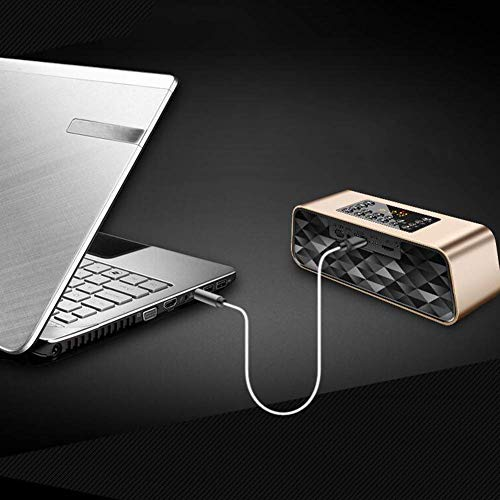 Bluetooth Speaker Dual Alarm Clock,Portable FM Radio for Seniors with Bluetooth Wireless Speaker, Headphone Jack, Supports USB Disk/TF Card