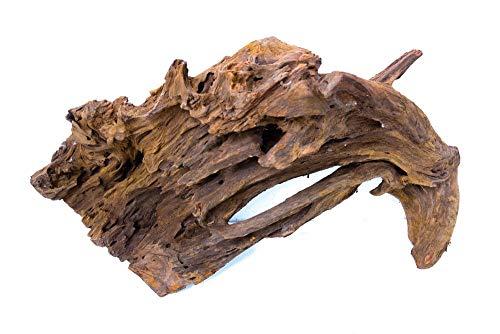 XXL Mangrovenwurzel Nr.9629 Aquarium Wurzel Mangrove Holz Deko Aquascaping Dekoration Landschaft Moos Natur Echtholz