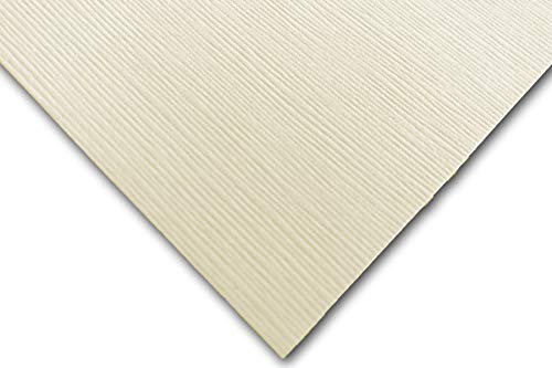 "DCS Canvas Textured Summer Linen Ivory 8.5"" x 11"" Card Stock - 20 Sheets - Matches Martha Stewart Summer Linen - Great for Scrapbooking, Crafts, DIY Projects, Etc."