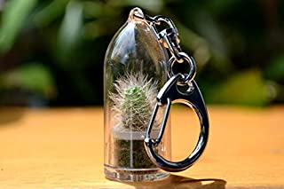 Snow White Cactus Terrarium Keychain Accessory. Gifts for Women, Gifts for Men. Nature Gift.