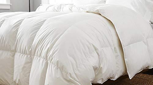 COTTON ART Edredon Nórdico 92% Plumon Densidad 275 gr/m² Cama de 150 (240 Ancho X 220 Largo)