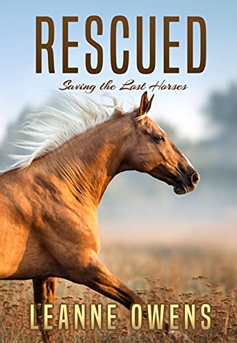 RESCUED: Saving the Lost Horses (The Dimity Horse Mysteries Book 2) (English Edition)
