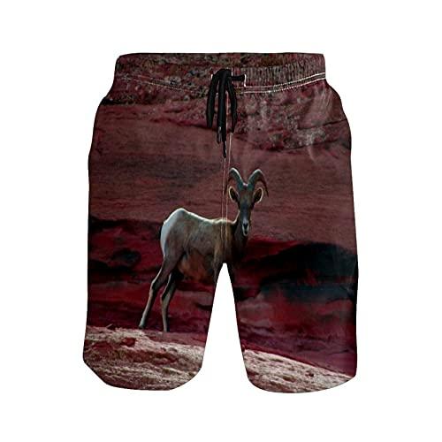 Pantalones cortos de playa para hombre con diseño de ovejas, 1 color, S
