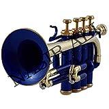 étui rigide et embouchure professionnel pour trompette piccolo Bb par...