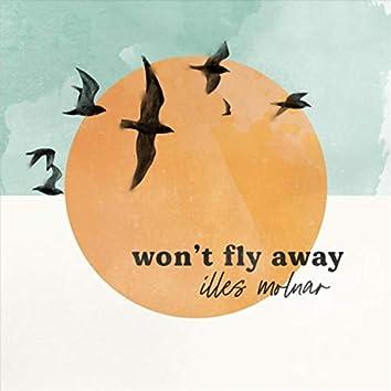 Won't Fly Away