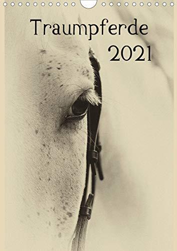 Traumpferde 2021 (Wandkalender 2021 DIN A4 hoch)