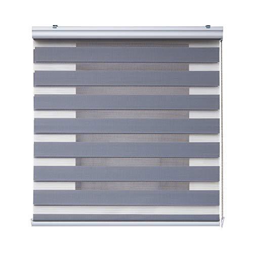 STORESDECO Stores Deco Estor Noche y Día Plus, Estor Enrollable con Doble Tejido para Ventanas y Puertas, Acabados Premium. (120 cm x 250 cm, Plata)
