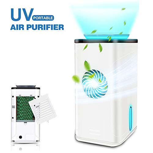 Best Review Of Wooyo 4-in-1 Air Purifier for Home or Office, True HEPA Filter & UV-C Sanitizer Clean...