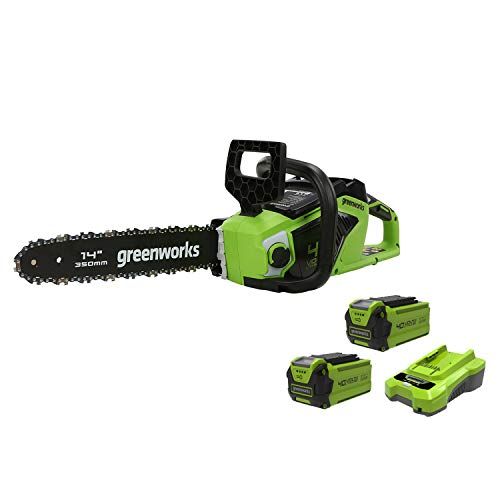 Greenworks Motosierra sin cable GD40CS15K2x (Li-Ion 40V 12 m/s velocidad de la cadena 35cm, longitud del sable, 180ml tanque de aceite, potente motor sin escobillas, con 2x 2Ah batería y cargador)