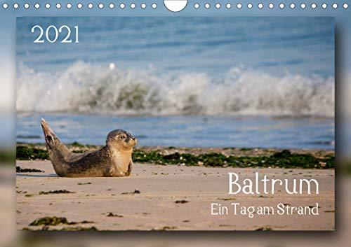 Baltrum - Ein Tag am Strand (Wandkalender 2021 DIN A4 quer)